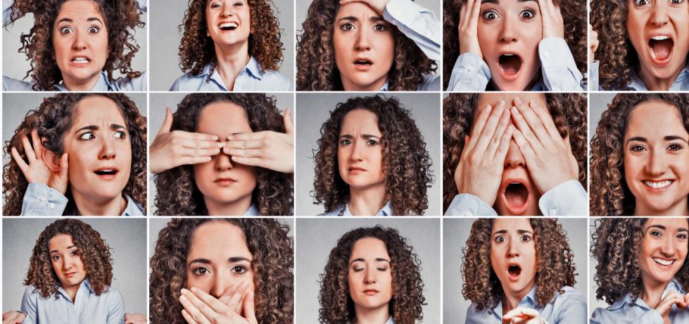 El sistema límbico y el origen de las emociones.