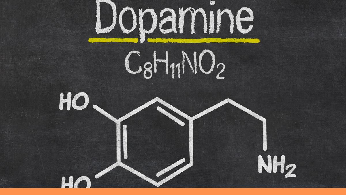 Dopamina, entre el amor y el dolor.