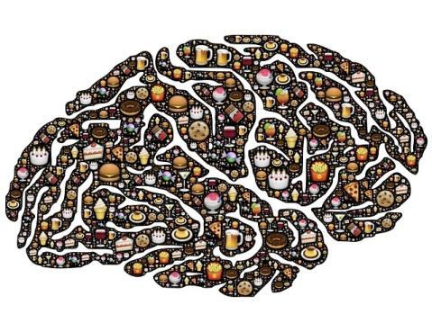 brain-954821_640