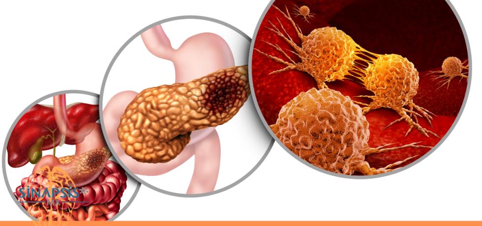 Fisiología del páncreas endócrino